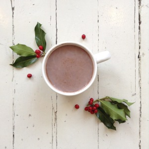 Guilt-Free Hot Cocoa
